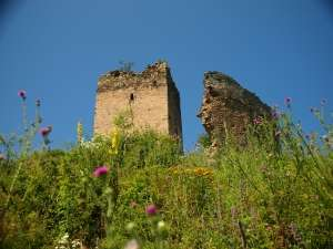 Cetatea Mălăiești